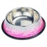Blingstar durable fancy cat food bowls manufacturers for pet